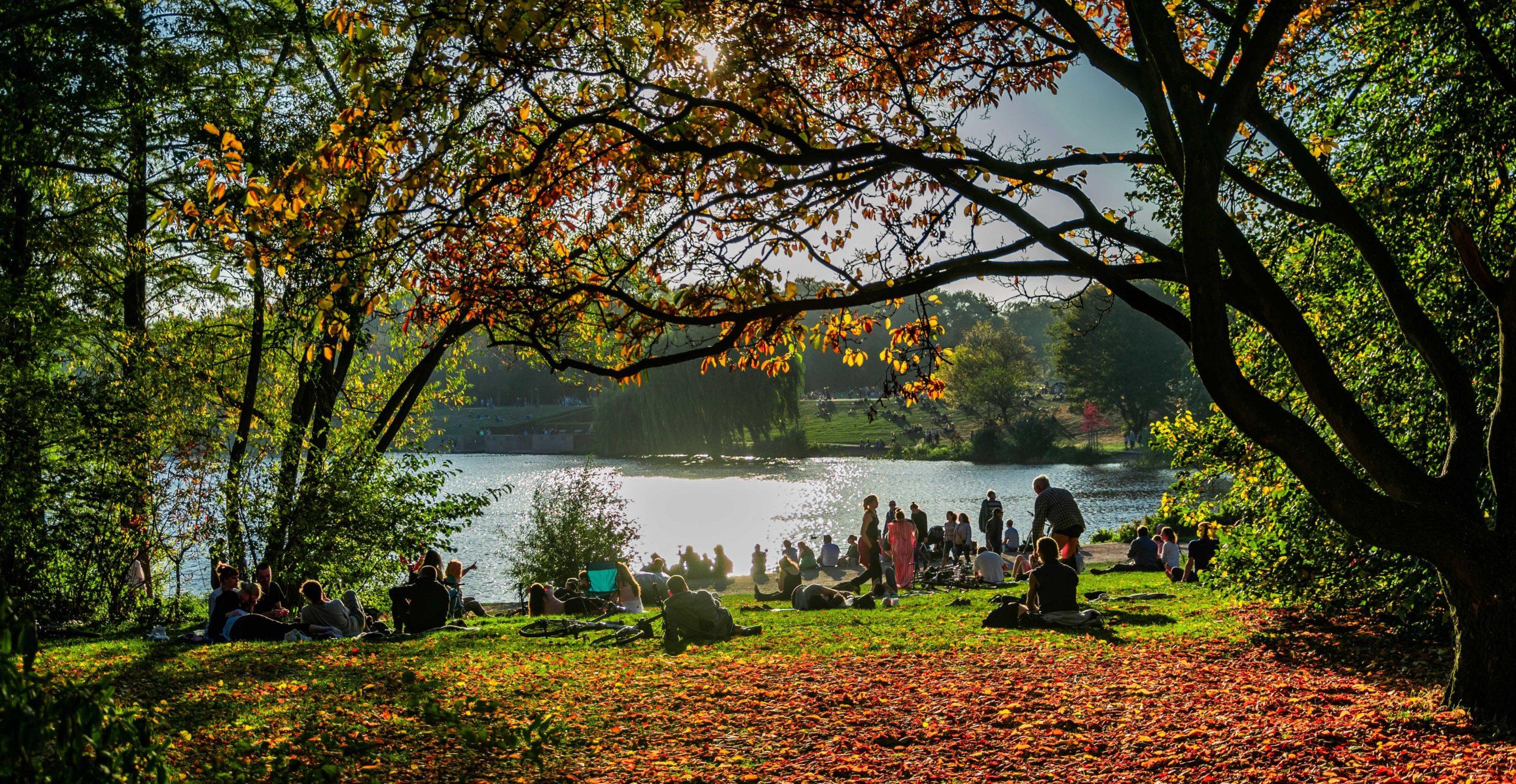 Hamburg Stadtpark Herbst