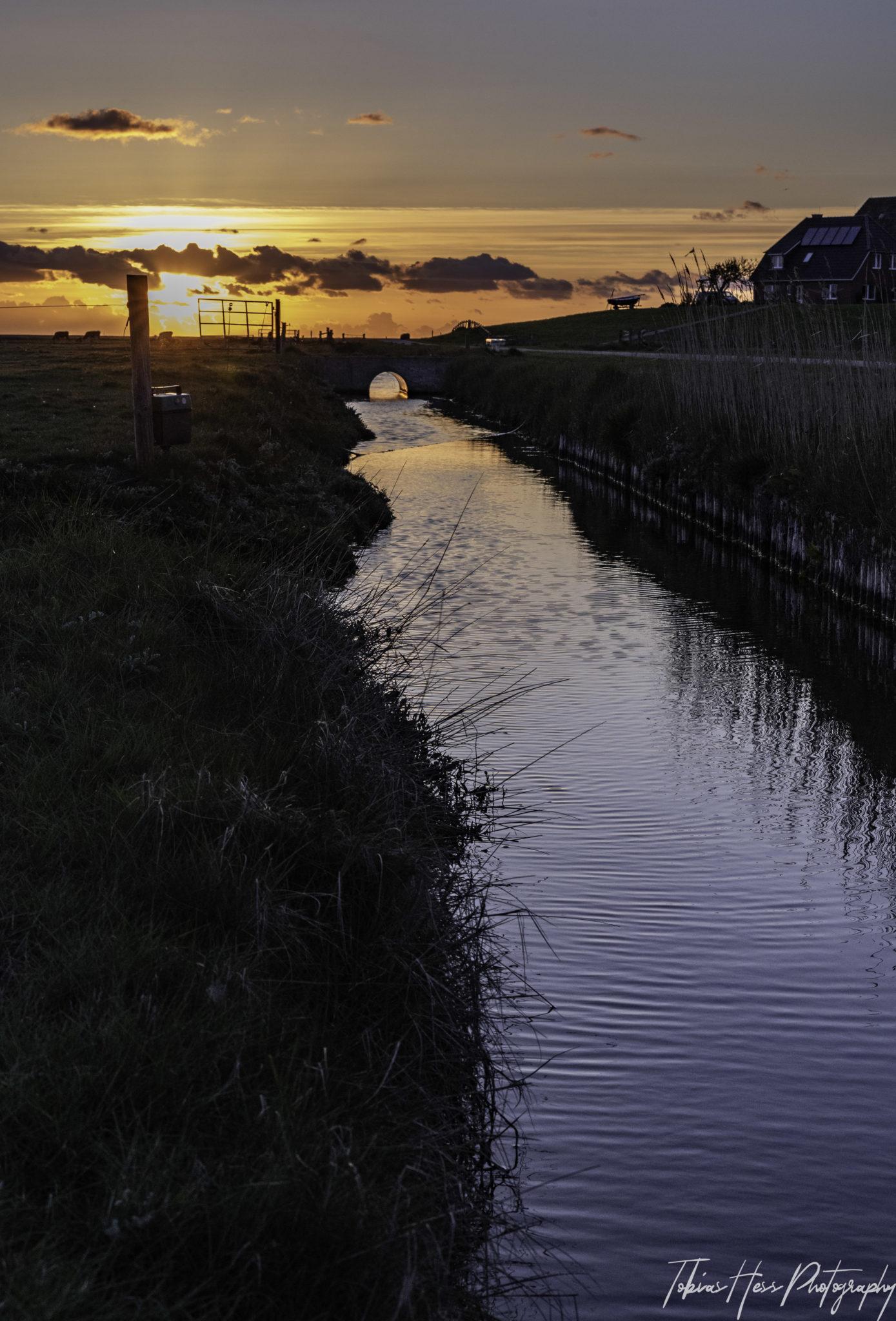 Hallig Hooge Nordsee